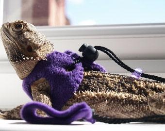 Purple Bearded Dragon Harness