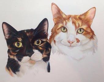 Made-to-Order, Custom Cat Portrait