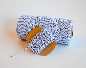 Blue and White Twine - 25ft Bundle - Blueberry Divine Twine