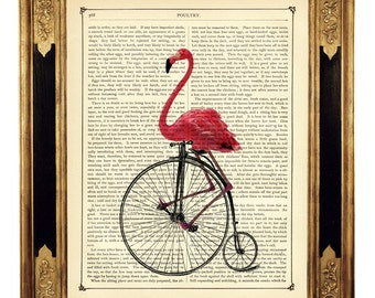 Art Print Flamingo riding Bike Unicycle Penny Farthing Bicycle - Vintage Victorian Book Page Art Print Steampunk Pink Flamingo