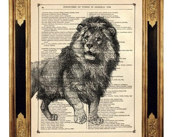 Lion Image Africa Art Print Animal Natural History Cat  - Vintage Victorian Book Page Art Print Steampunk