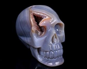 Natural Blue Grey Agate Geode Quartz Crystal Cluster Carved Skull ,Healing Skull S024