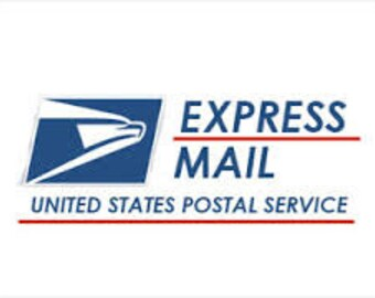 EXPRESS MAIL shipping upgrade from first class - padded flat rate mailer