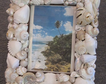 Beach Decor Seashell Picture Frame - Shell Frame - White Shell Picture Frame - Dark Wood Frame - Beach Wedding
