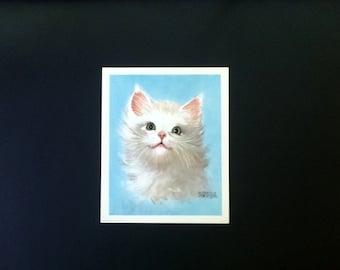 Fuzzy Kitten - Charming Color Print - Cuddly Kitten - Florence Kroger - Donald Art Company - No 3555- Vintage 1961 - White Kitten