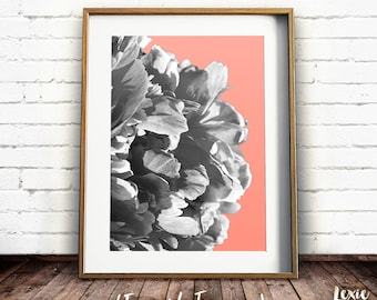 Flower Print, Abstract Flower, Coral Peony Print, Black and White Flower photo, Peonies, Flower Poster, Instant Download, Large Print