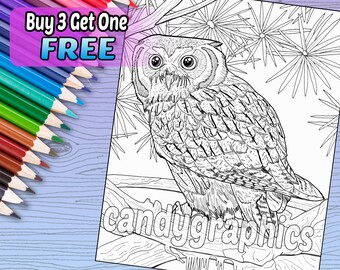 Owl - Adult Coloring Book Page - Printable Instant Download