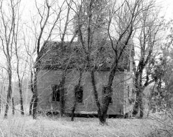 black and white, house, home, dark, gray, wall decor, trees, abandon, moody, home decor