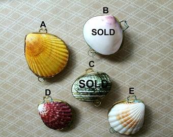 vintage shell trinket box hinged in brass, coastal decor, ring presentation box, beach wedding, seashell trinket box