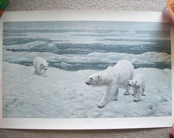 Charles Frace' Polar Bear Print 1776/2000 Signed 1980