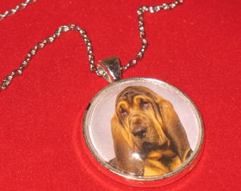 Bloodhound Dog Breed Glass Cabochon Silver Pendant Necklace 24 inch