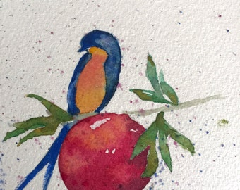 Swallow Bird and Pomegranate