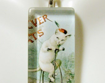 Clever cat riding a bicycle glass pendant and chain - CGP12-083