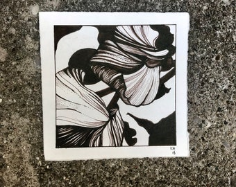 Banana Leaf Black and White Flower Ink Drawing