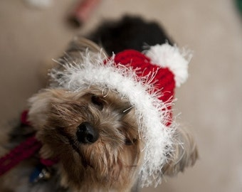 Santa Red Knit Hat for Dogs-Small or Medium