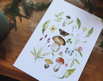 Butterfly Botanica A5 Illustration Print
