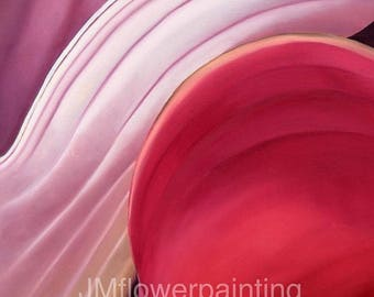 Pink Calla lily Flower Print Close Up