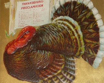 Big Turkey With Thanksgiving Proclamation Antique Postcard