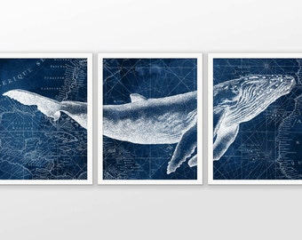 Humpback Whale on Nautical Map Watercolor Art Poster Set Of 3 - Whale Art Print - Humpback Whale Poster - Humpback Whale Wall Art (AB585)