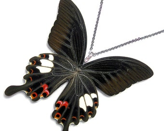 Real Butterfly Wing Necklace / Pendant (WHOLE Papilio Helenus - W082)