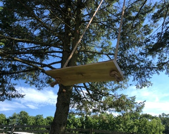 Original Tree Swing - D. C. Aquilante
