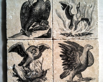 Winged Fantastic Marble Tile Coasters - Set of 4