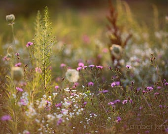 Meadow, Canvas Art, Giclee Print, Fine Art Photography, Modern Decor, Trending, Nature Photography, Wildflowers, Modern Home