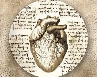 Heart Da Vinci style plate