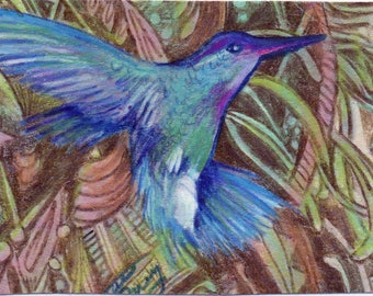 original art  aceo drawing hummingbird zentangle design spirit animal
