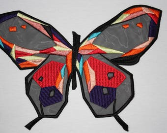 1 beautiful colorful Butterfly wing butterfly