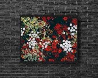 Wild Flowers Photo - Flowers Photo Print - Red White Green - Botanical Photo - Paper Photo Print - Flower Wall Art - Flower Wall Decor