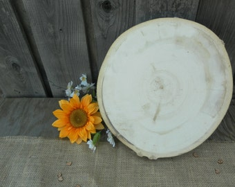 "Large 11""-12"" Aspen Tree Slice - 12 Inch ~ 11 Inch ~ Rustic Wedding Decor, Cake Stand, Charger, Wedding Centerpiece, Wood Slab"