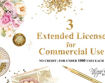Package of Three Extended Licenses for Commercial Use | Discount Package