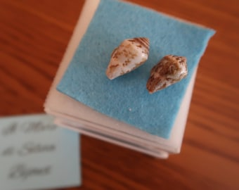 Seashell sealover earrings with real seashells handcollected in Italy