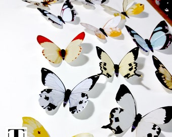 White Butterflies, 3D Butterflies, Butterfly Wall Decor, Butterfly  Decoration, 3D Wall Butterflies