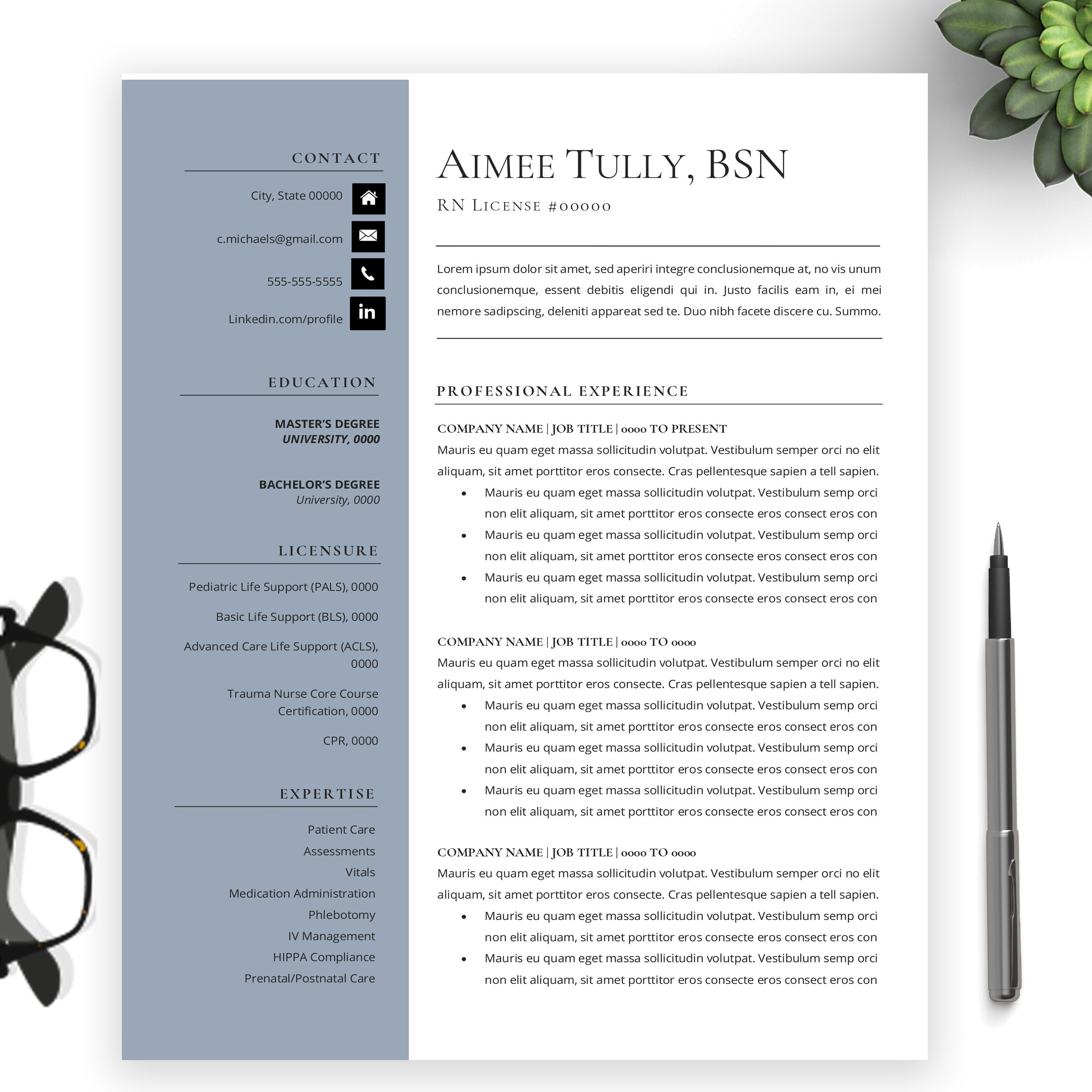Registered Nurse Resume For Word MAC Pages BSN MSN