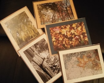 Blank Photo Cards with Envelope - Nature