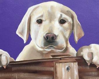 Custom Pet Portrait - Oil Painting