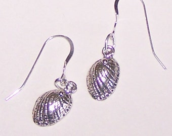 Sterling Silver SEA SHELL Earrings - Marinelife, Ocean, Seashore, Beach