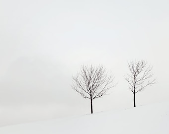 Winter Landscape Photography Print, Black and White Art, Nature Photography, Minimalist Art Print, Scandinavian Art, Trees - Two Solitudes