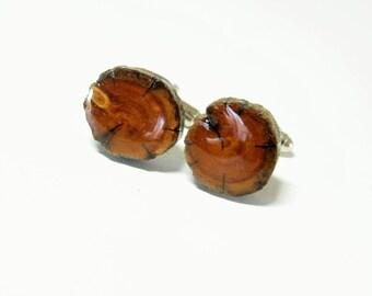 Boutons de manchette bois génévrier antique. Arbre branche boutons de manchette.