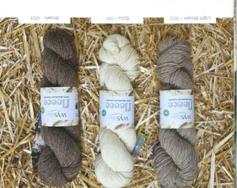 These are  100gm  skeins of Blueface Leicester wool DK