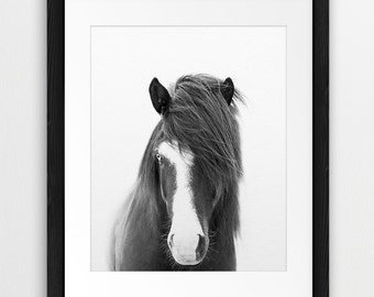 Horse Print, Horse Photo, Black And White Photography, Wild Horse Photo, Icelandic Horse, Wilderness Print, Modern Wall Art, Printable Art