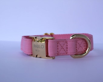 That's So Fetch Pink Dog Collar Gold Hardware Adjustable Designer Dog Accessories Pet Fashion Stylish Girly Cat Pablo and Co