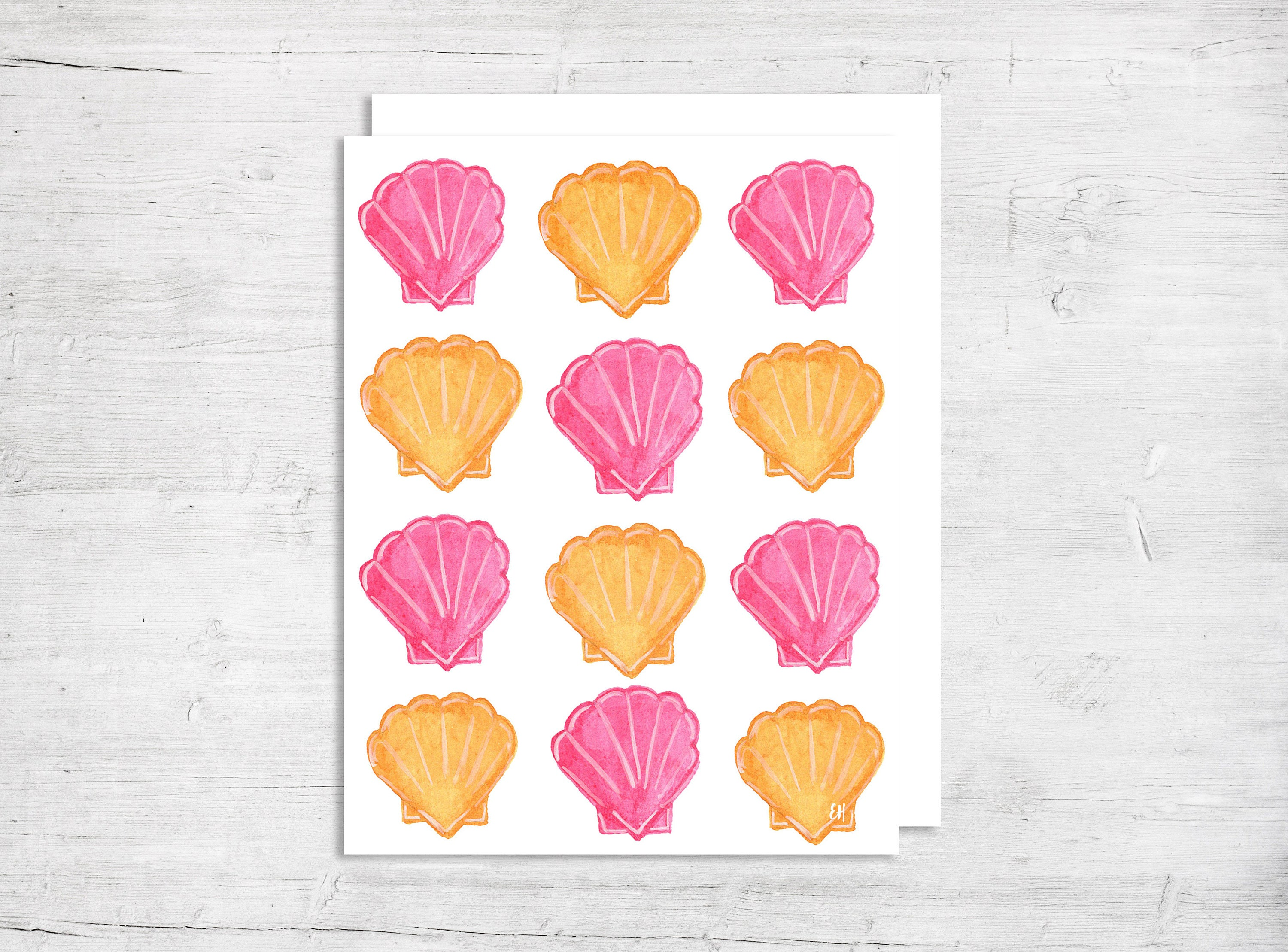 Blank Birthday Card Sea Shell Birthday Card Thank You Card