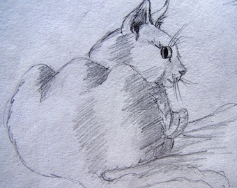 ACEO cat printed from an original drawing of my pet open edition