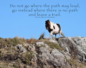 Do Not Go Where Photo Quote