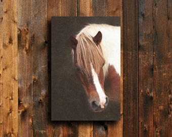 A Horse - Horse photography - Horse art - Horse decor - Horse wall hanging - Equine decor - Horse decoration