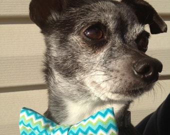 Dog Bow Tie / Bow Dog Collar Accessory