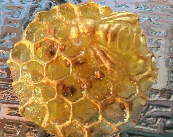 Resin Honeycomb with Bee